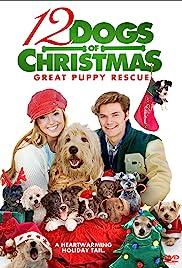 12 perros de la Navidad: Gran Rescate del perrito