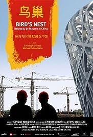 Nido de Pájaro - Herzog & De Meuron en China